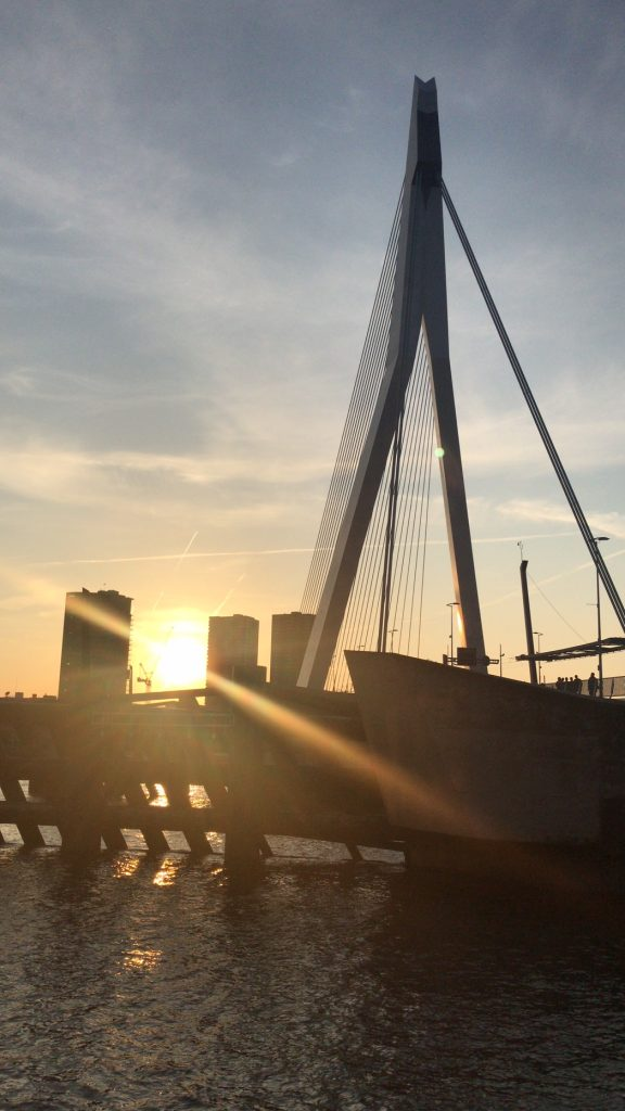 Erasmusbrug a Rotterdam